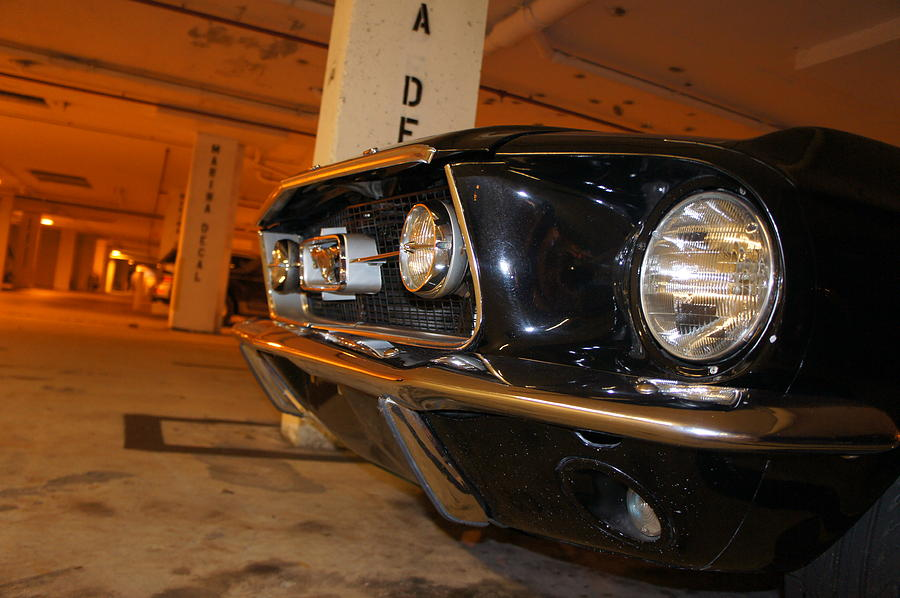 Mustang Photograph - The Beast by Jaron R