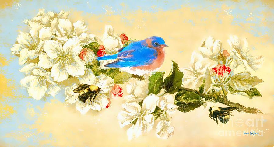 Bluebird Photograph - The Beautiful Bluebird by Tina LeCour