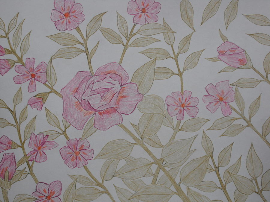 Rose Drawing - The Beautiful Flower by Arold Augustin