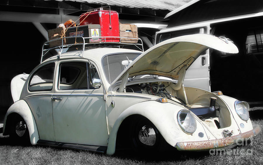 Cars Photograph - The Beetle  by Steven Digman