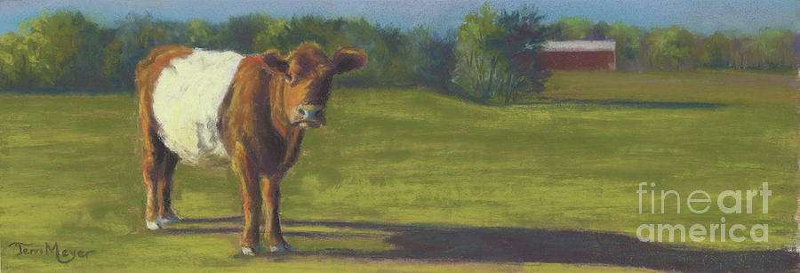 The Belted Cow Painting by Terri  Meyer