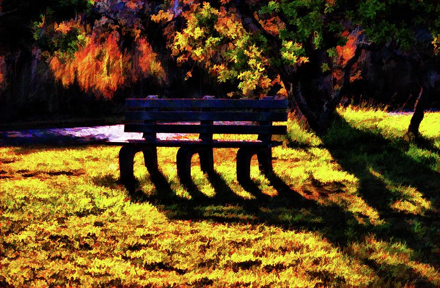 Nature Photograph - The Bench 2 Version 3 by Kristalin Davis