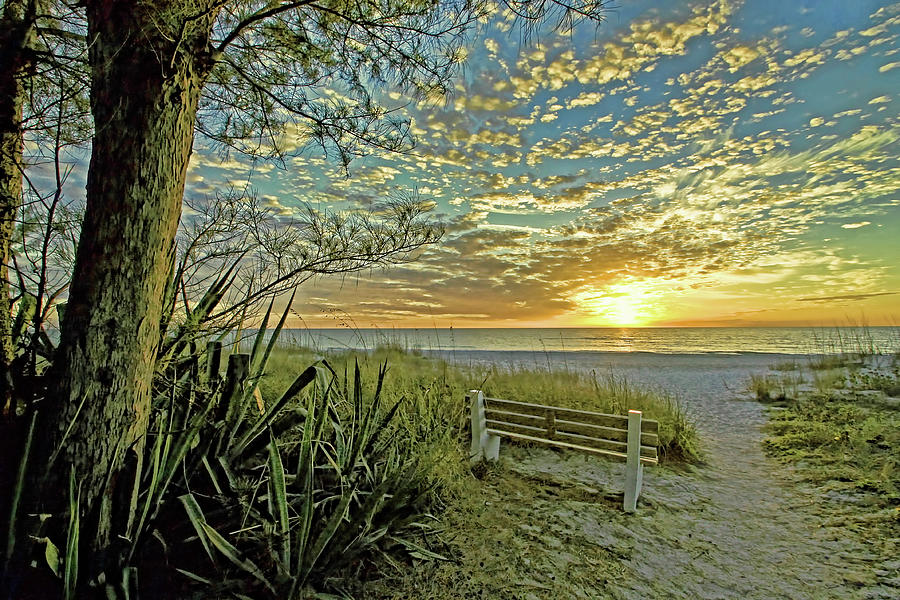 Florida Sunset Photograph - The Bench by HH Photography of Florida