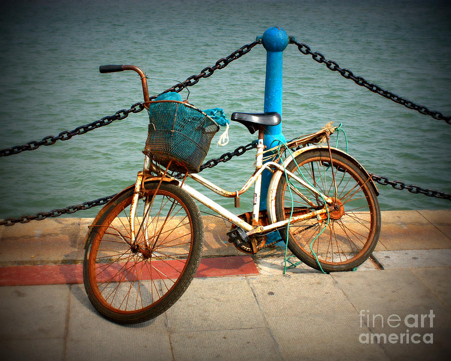 Stories Photograph - The Bicycle by Carol Groenen