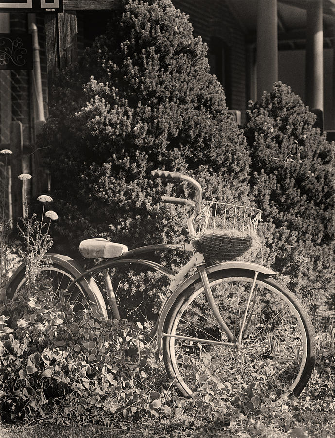 Bike Photograph - The Bicycle Garden II by Jim Furrer