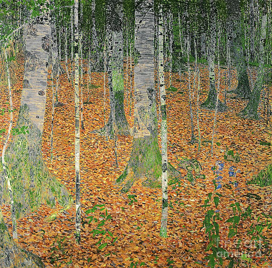 The Painting - The Birch Wood by Gustav Klimt