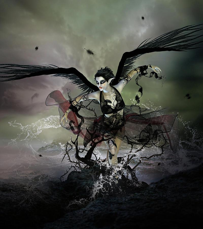Swan Digital Art - The Black Swan by Mary Hood