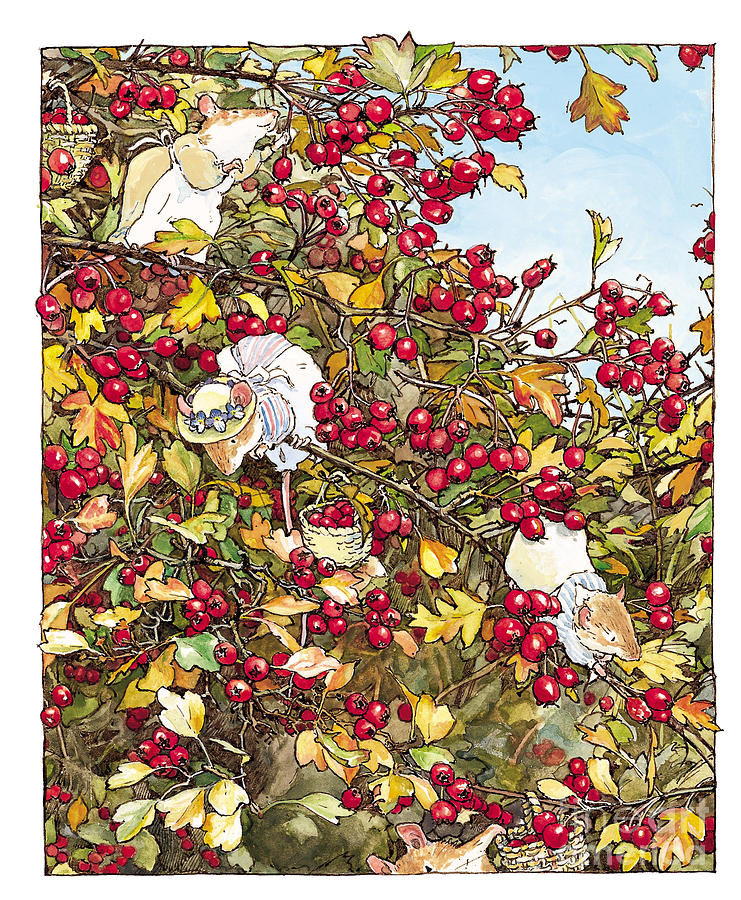 Brambly Hedge Drawing - The Blackthorn Bush by Brambly Hedge
