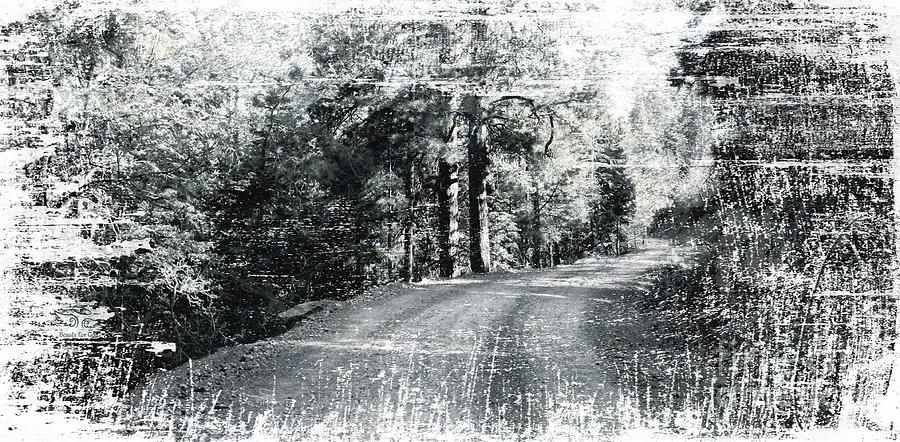 Vintage Photograph - The Bleached Dirt Road by Beauty For God