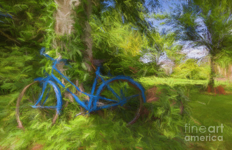 The blue bicycle by Dominique Guillaume