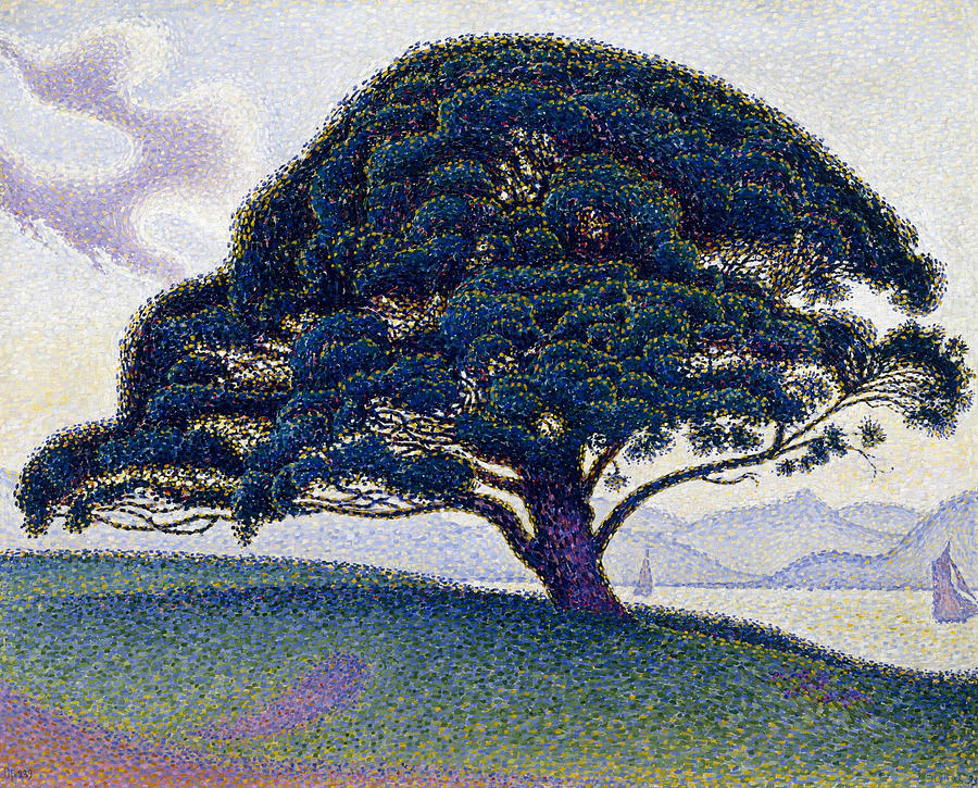 Paul Signac Painting - The Bonaventure Pine  by Paul Signac