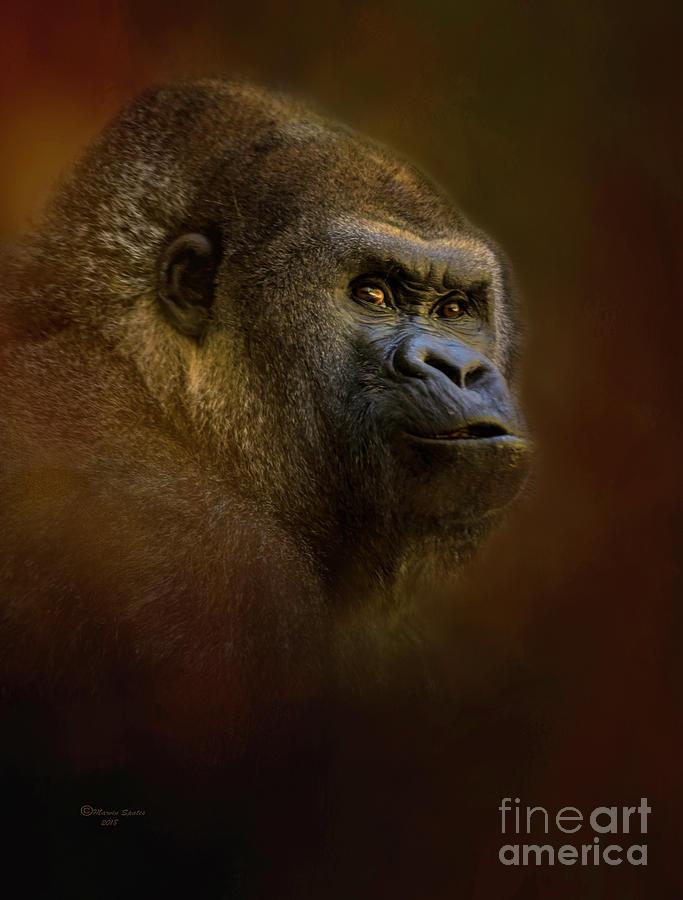 Gorilla Mixed Media - The Boss by Marvin Spates