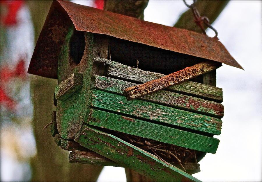 Bird Sanctuaries Photograph - The Boulevard Of Broken Dreams by Ira Shander
