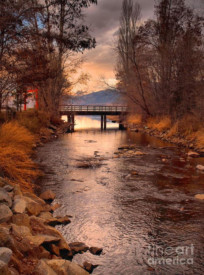Bridge Photograph - The Bridge By The Lake by Tara Turner