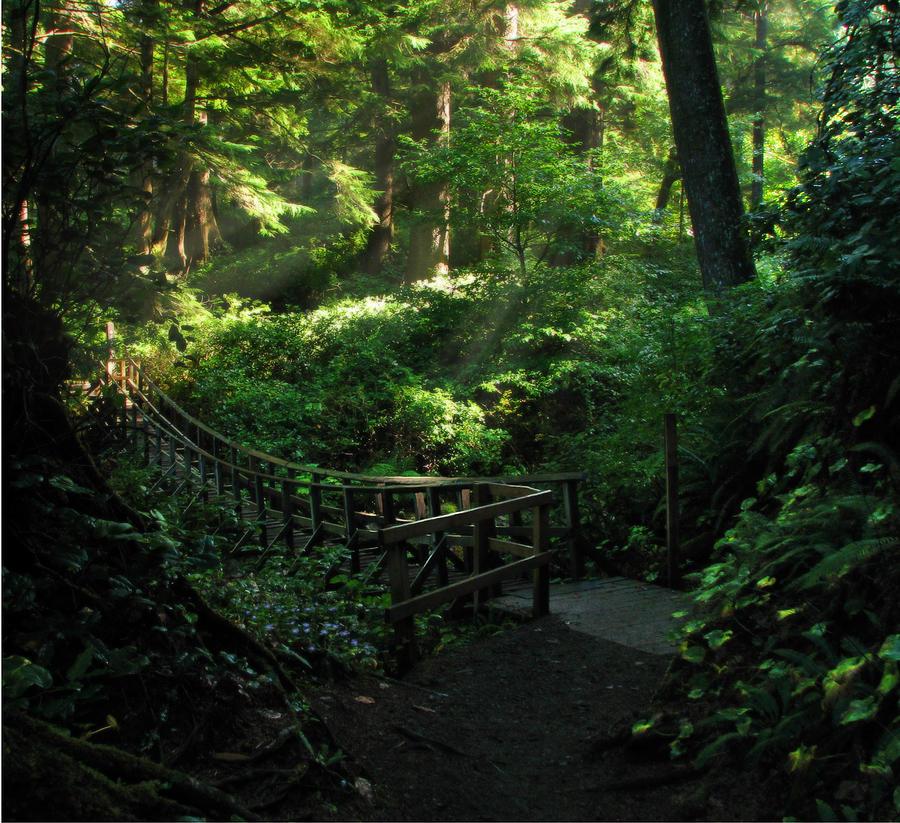 Oregon Photograph - The Bridge Home by Cliff Hawley