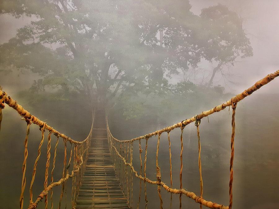 The Bridge by Thomas M Pikolin