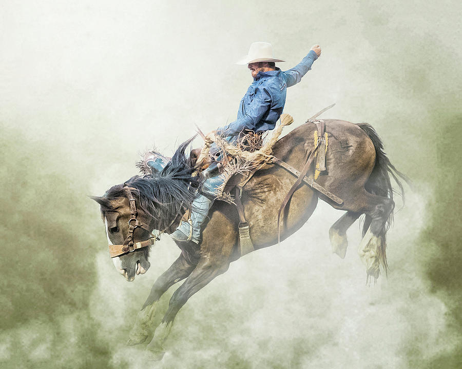 The Bronc Stomper by Ron McGinnis
