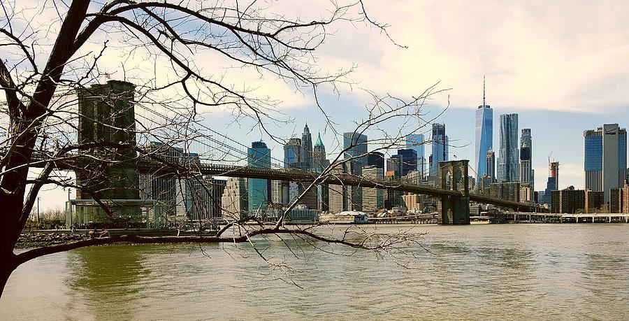 Bridge Photograph - The Brooklyn Bridge  by Elizabeth La Caille
