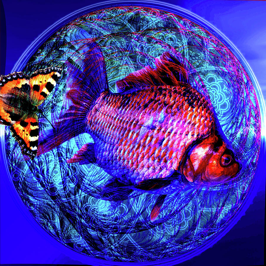 Fellow Man Digital Art - The Butterfly And The Fish by Joseph Mosley