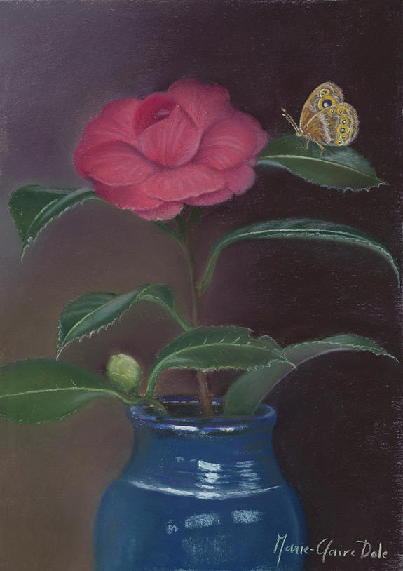 Camellia Pastel - The Camellia and The Butterfly by Marie-Claire Dole