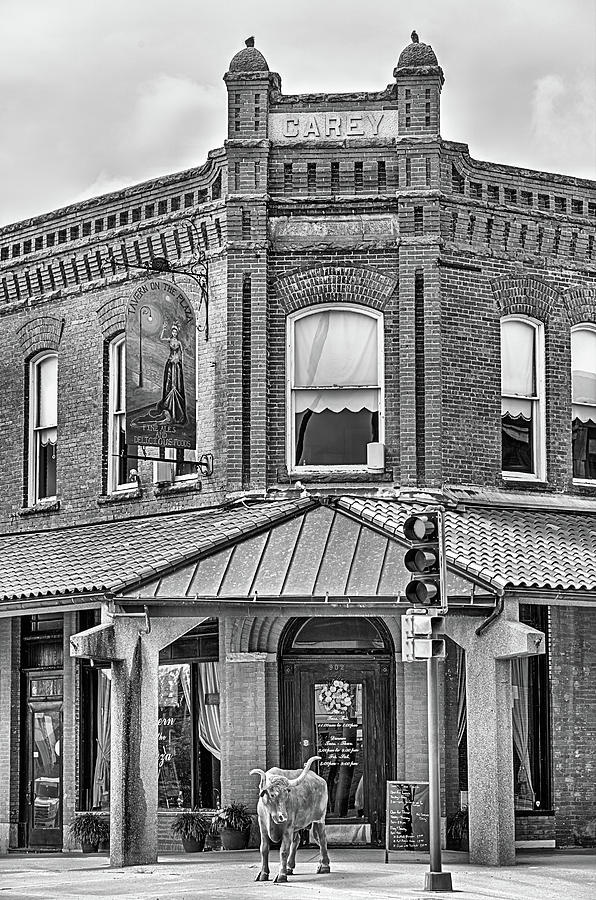 Coffeyville Photograph - The Carey Building Black And White by JC Findley