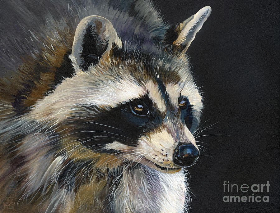 Indigenous Wildlife Painting - The Cat Food Bandit by J W Baker