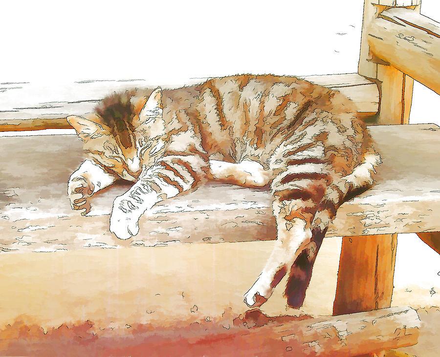 Cat Digital Art - The Cat Is Back by Jan Hattingh