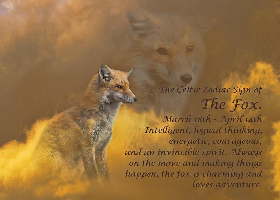 The Celtic Zodiac Sign Of The Fox by Stephanie Laird