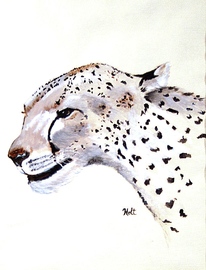 The Cheetah by Linda Holt