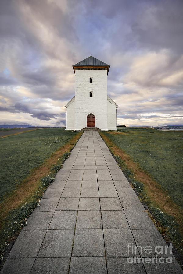 The Chosen Path Photograph