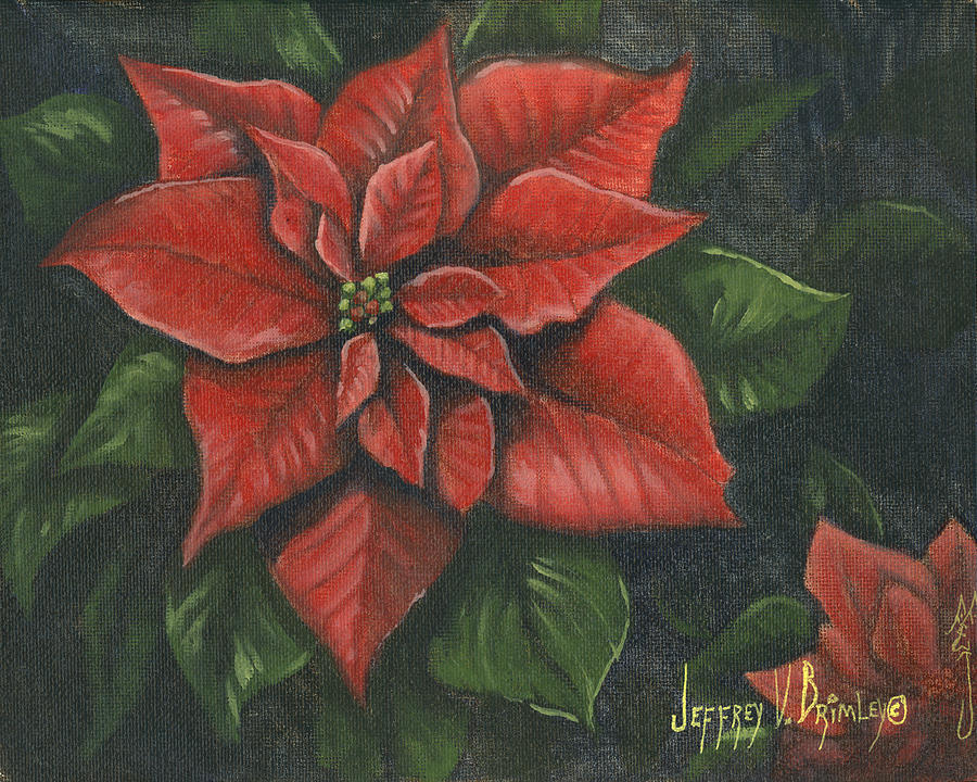 Flower Painting - The Christmas Flower by Jeff Brimley