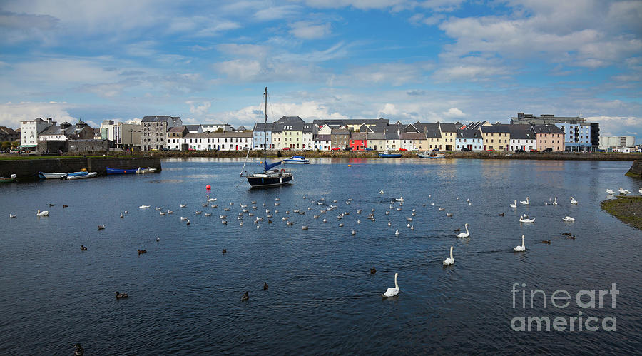 Claddagh Photograph - The Claddagh Galway by Gabriela Insuratelu