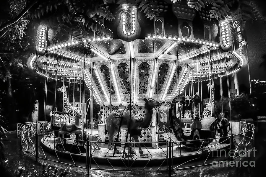 The Classic Carousel At Night Photograph