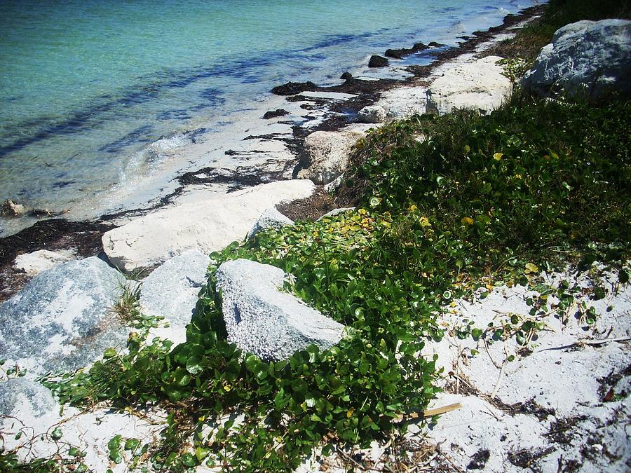 Ocean Photograph - The Climb by Demi Marrall