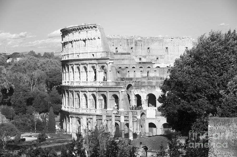 The Colosseum black and white Photograph by Stefano Senise
