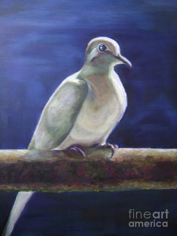 Dove Painting - The Companion by Asha Porayath
