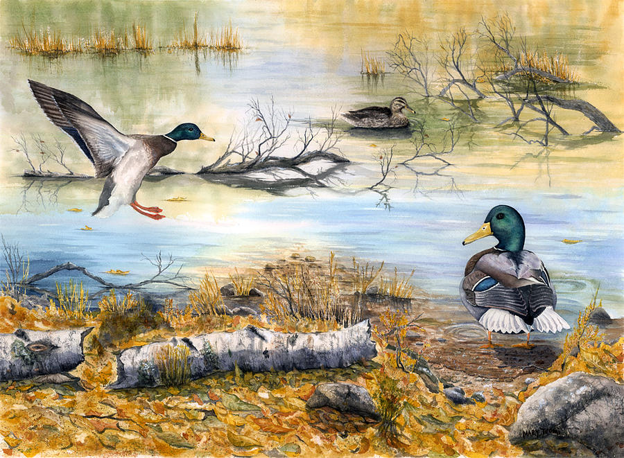Ducks Painting - The Competition by Mary Tuomi