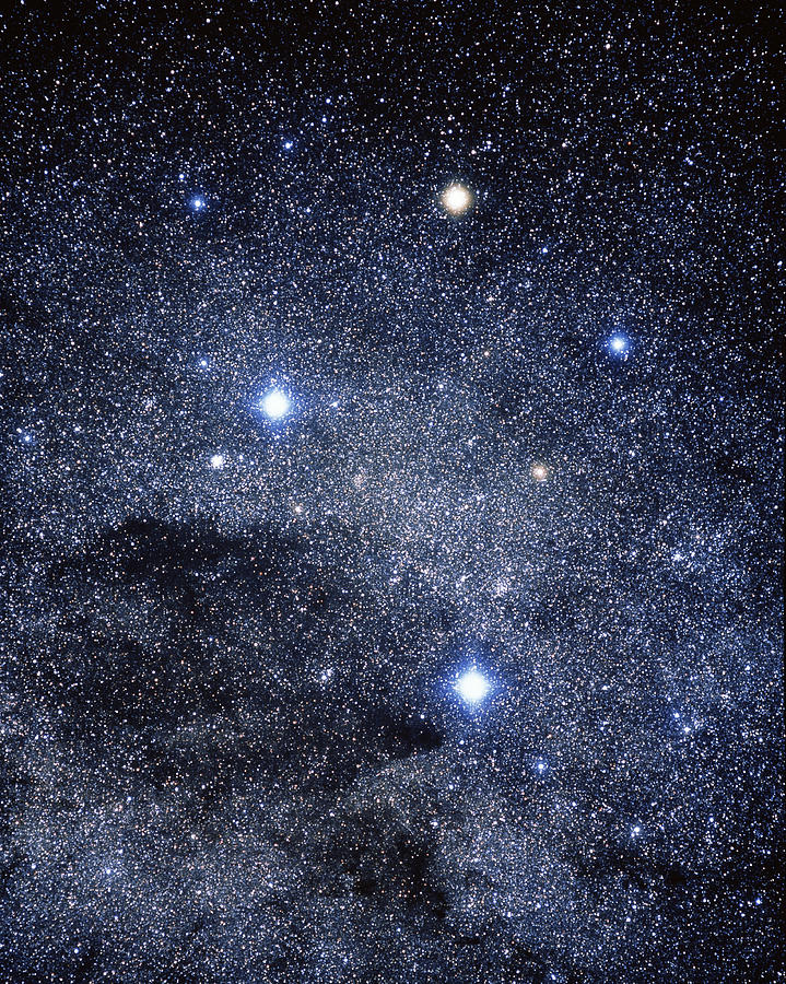 Southern Cross Photograph - The Constellation Of The Southern Cross by Luke Dodd