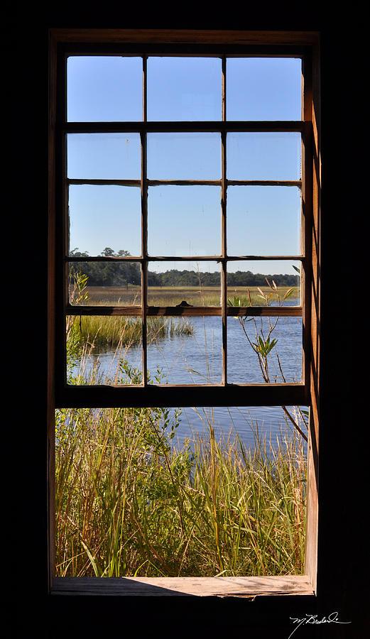 The Cotton Dock Photograph by Melissa Wyatt