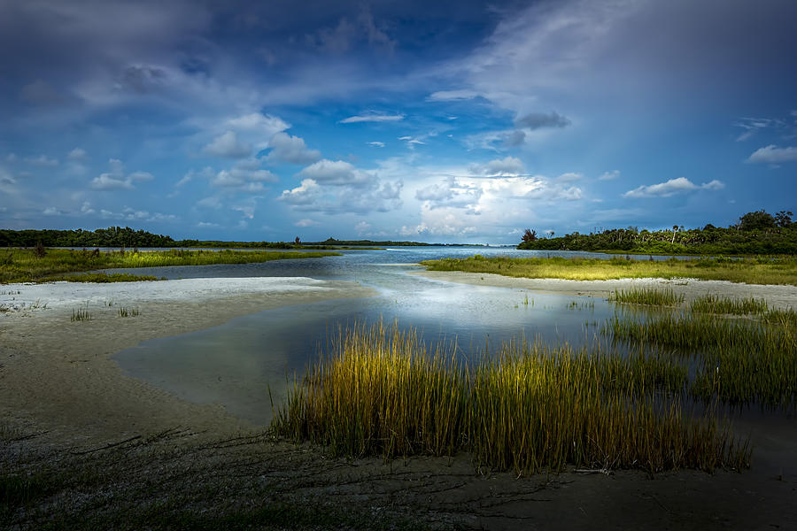 Cove Photograph - The Cove by Marvin Spates