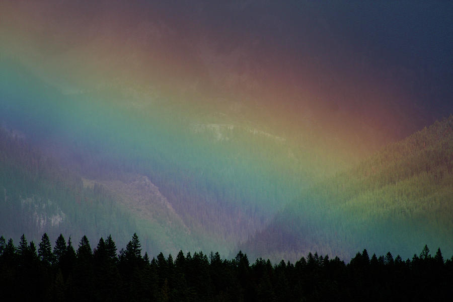 The Promise Photograph - The Covenant  by Cathie Douglas