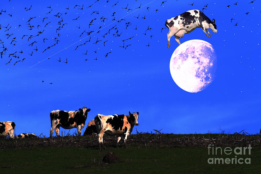 Cow Photograph - The Cow Jumped Over The Moon by Wingsdomain Art and Photography