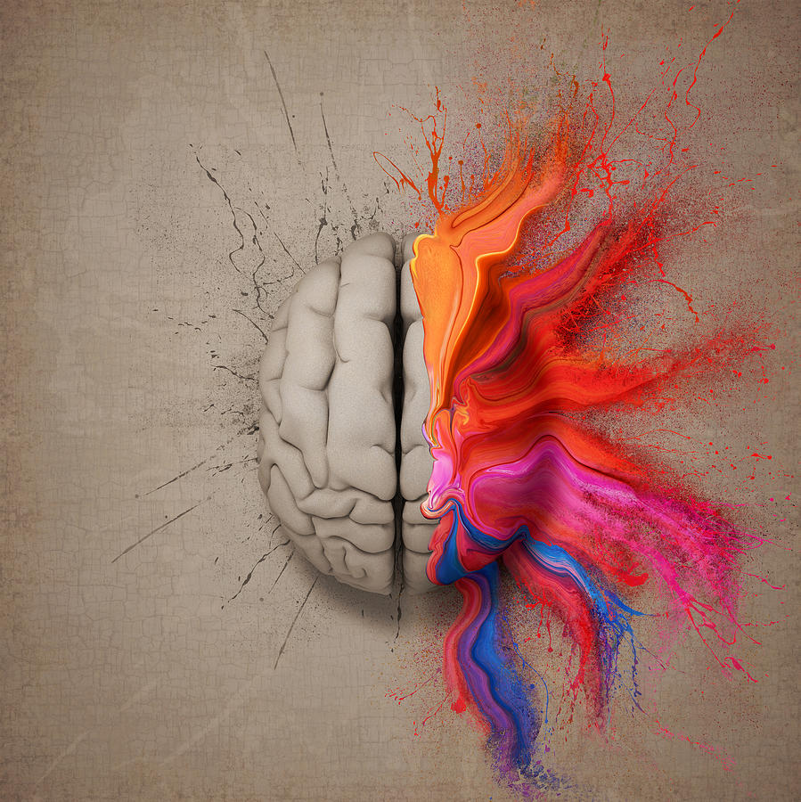 The Creative Brain Digital Art