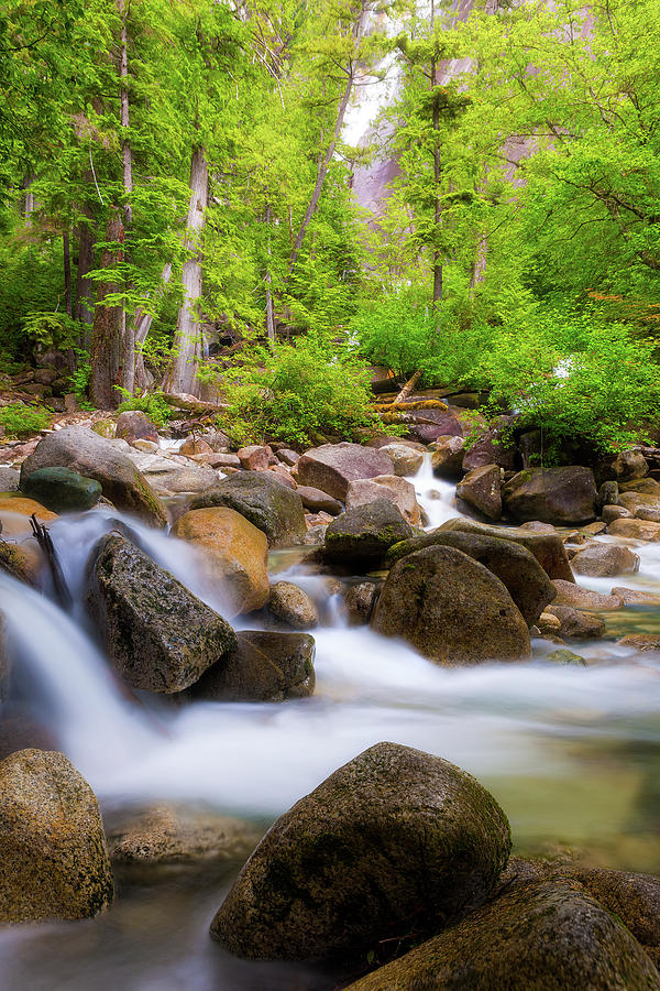 The Creek Below Shannon Falls by Jit Lim