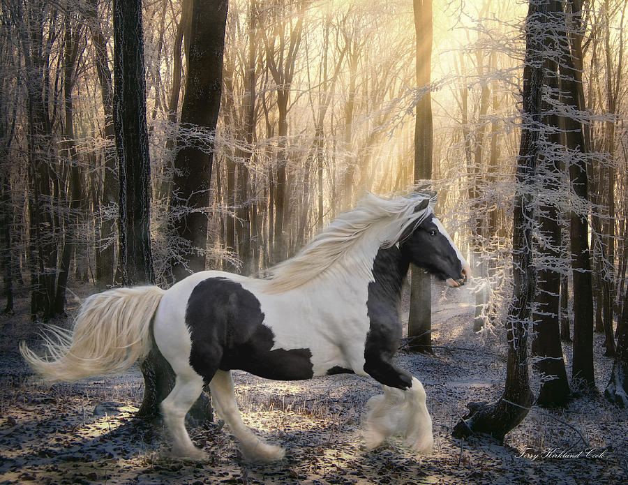 Equine Digital Art - The Crystal Morning by Terry Kirkland Cook