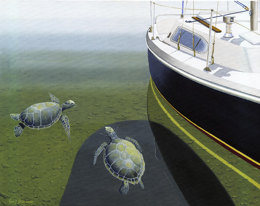 Sail Boat Painting - The Curiosity Of Sea Turtles by Gary Giacomelli