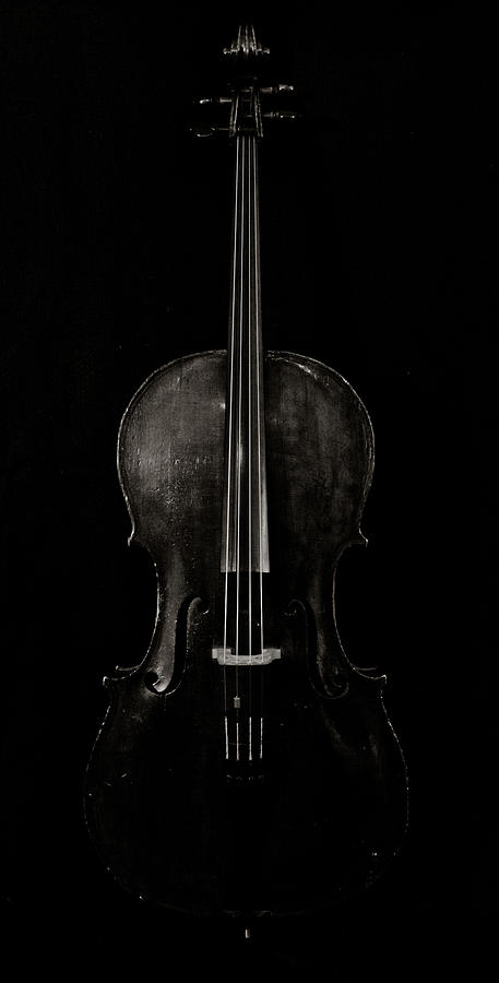 Cello Photograph - The Curve Of Her - Two by Sam Hymas