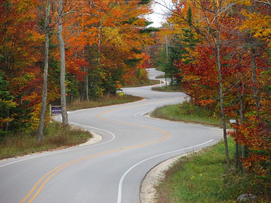 The Curvy Road by Greta Larson Photography
