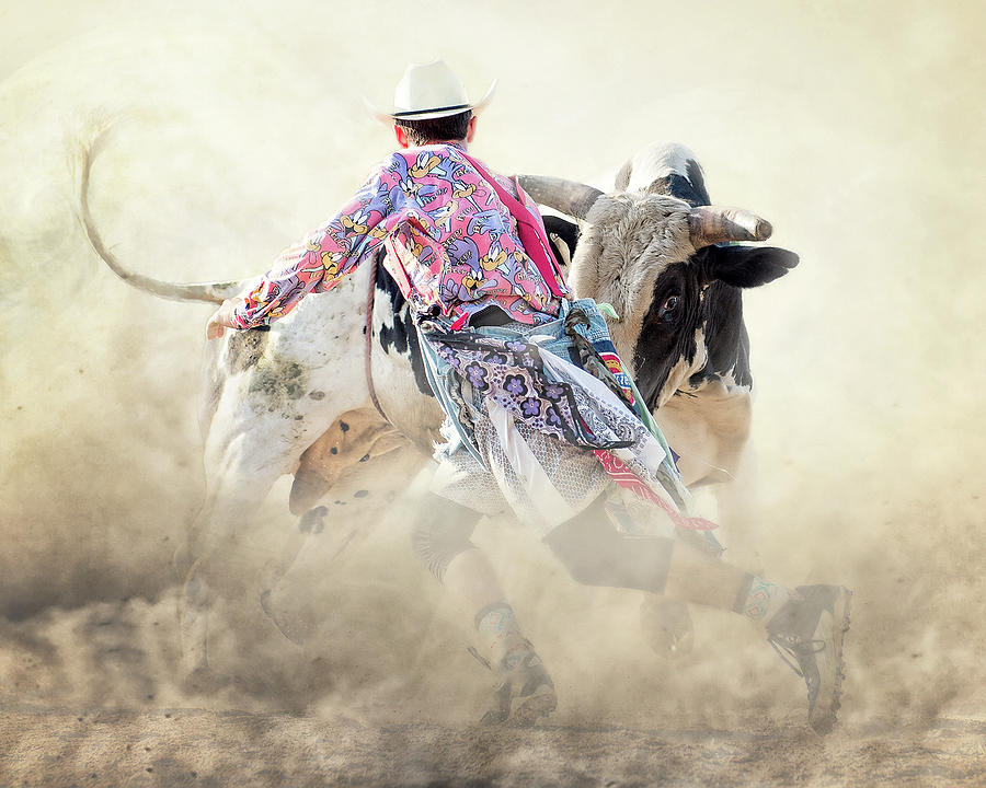 Rodeo Photograph - The Dance by Ron McGinnis