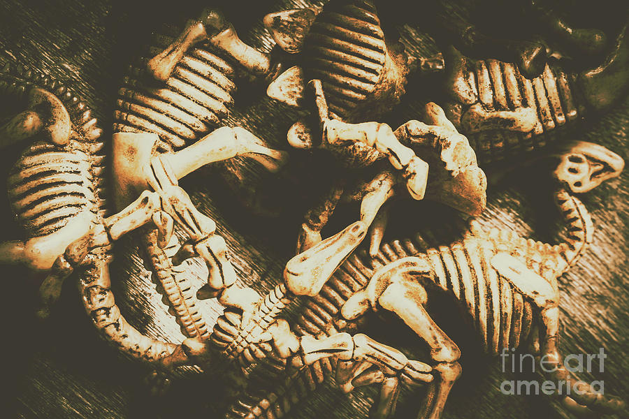 Paleontology Photograph - The Dark Dinosaur Abstract by Jorgo Photography - Wall Art Gallery